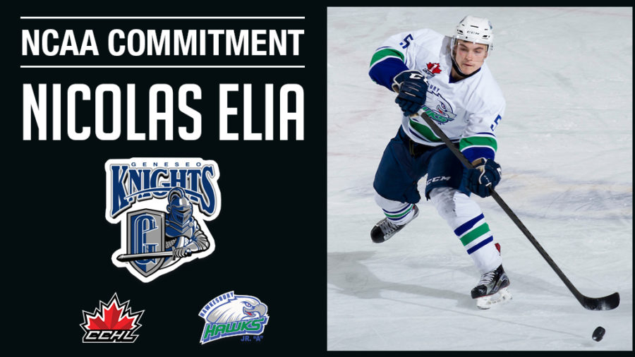 Commitment Alert | Hawks Nicolas Elia commits to NCAA SUNY Geneseo