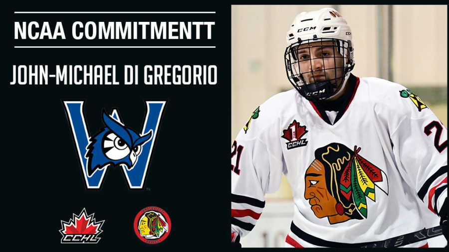 Commitment Alert   Braves Di Gregorio commits to NCAA Westfield State University